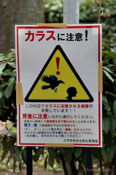 caution_karasu